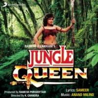 Anand Milind/Udit Narayan/Kavita Krishnamurthy O Meri Jungle Queen
