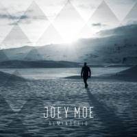 Joey Moe Almindelig