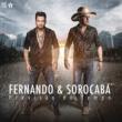 Fernando & Sorocaba Previsão do Tempo