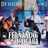 Fernando & Sorocaba Férias em Salvador