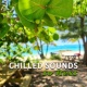 Yoga Relaxation Music Chilled Sounds to Rest ‐ Peaceful Music to Calm Down, Relaxation Sounds, Waves of Calmness