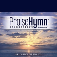 Praise Hymn Tracks Find Your Wings (As Made Popular by Mark Harris)