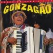 Luiz Gonzaga Forró de Cabo a Rabo