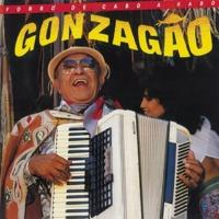 Luiz Gonzaga Forrónerao