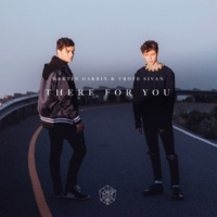 Martin Garrix/Troye Sivan There for You
