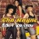 Tha' Rayne Didn't You Know (Radio Mix)