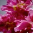 MONDO GROSSO ラビリンス (Album Mix) [Vocal:満島ひかり]
