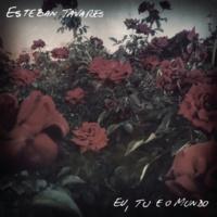 Esteban Tavares Sobre Você