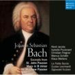 La Petite Bande Johannespassion, BWV 245: Parte prima: Von den Stricken meiner Sünden (No. 7 Arie)