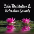 Guided Meditation Music Zone Meditation: Harmony