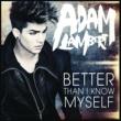 Adam Lambert Better Than I Know Myself (Dave Audé Dubstep Remix)