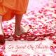 Swami Drishti Tratakauram Zen Spirit Om Shanti ‐ Yoga Meditation Healing Music for Grace Awakening