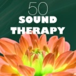 Sound Therapy Music Specialists