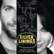 Jessie J Silver Linings Playbook