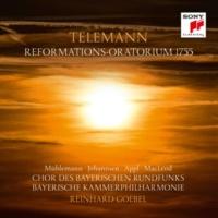 Bayerische Kammerphilharmonie Holder Friede, heil'ger Glaube, TWV 13:18: No. 12, Vor jenem Freudentage (Recitativo)