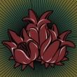 Luis Carlinhos Três Lindas Flores