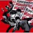Brand New Vibe Wonderful World