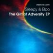 Sleepy & Boo The Gift of Adversity