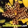 Cheeseburger Filthole