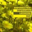 Bob Forrest Born to Run