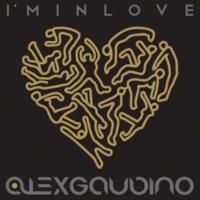 Alex Gaudino I'm In Love