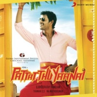 SS Thaman Pattatthu Yaanai (Original Motion Picture Soundtrack)