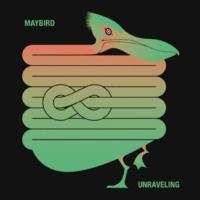 Maybird Keep in Line