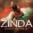 Various Artists Zinda Spirit of India