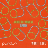 Punctual What I Love (Jarreau Vandal Remix)