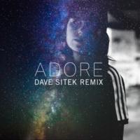 Amy Shark Adore (Dave Sitek Remix)