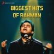 "A.R. Rahman/Abhay Jodhpurkar/Harini Moongil Thottam (From ""Kadal"")"