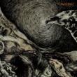 Bloodlet Cpai-75 (Live)