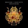 Bruno Mars, David Guetta Versace On The Floor (Bruno Mars vs. David Guetta)