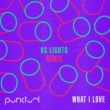 Punctual What I Love (KC Lights Remix)