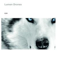 Lumen Drones Husky