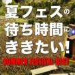 クイーンズ・オブ・ザ・ストーン・エイジ 夏フェスの待ち時間にききたい - Summer Festival Best -