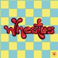 Wheatus Sunshine