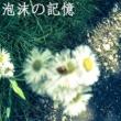Kanata.S 泡沫の記憶