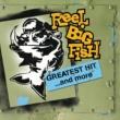 Reel Big Fish Everything Sucks (Clean Main Version)