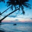 Relax Natural Healing 眠れる島国癒しヒーリング ~楽園アロマ音楽シリーズ