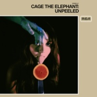 Cage The Elephant Too Late To Say Goodbye (Unpeeled)