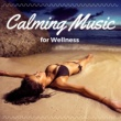 Justine Shivers Calming Music for Wellness: Insomnia Help Sleeping Music, Dealing with Stress, Coping with Anxiety