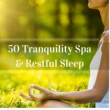 Spa Tribe 50 Tranquility Spa & Restful Sleep with The Deep Massage Music Tribe