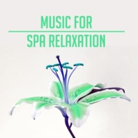 Relaxing Spa Music Reiki