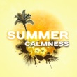 Afterhour Chillout Summer Calmness - Chill Out Melodies to Relax, Holiday Vibes, Time to Rest, Beach Relaxation