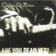 Children Of Bodom Are You Dead Yet? [Enhanced EP Edition]