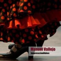 Manuel Vallejo Yo No Me Hubiera Perdido