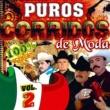 Various Artists Puros Corridos de Moda 100% Originales, Vol. 2