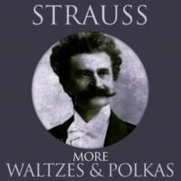 Orchestra Der Wiener Volksoper&Carl Michalski Artist's Life (Kunstlerleben) Waltz Op.364