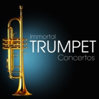 Camerata Romana&Hanspeter Gmur Concerto for Trumpet and Orchestra E Flat Major: Rondo